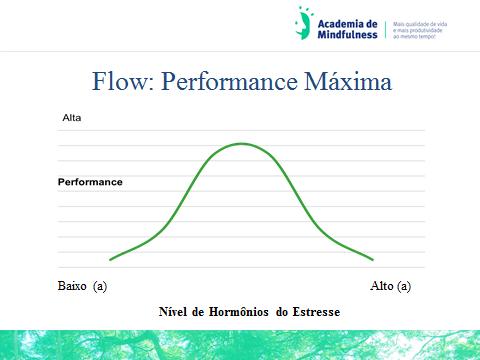 academia-de-mindfulness-flow